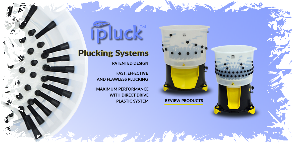 Wet Plucking Systems in london