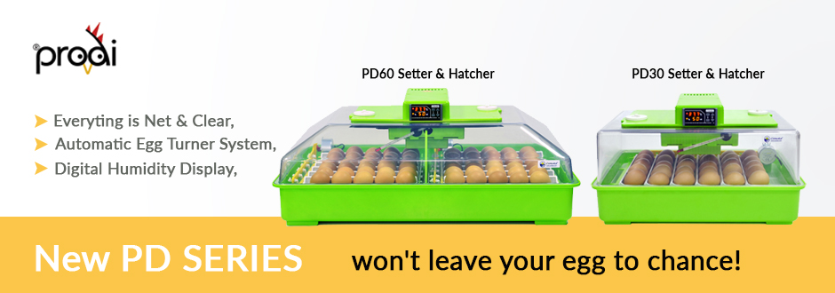 Egg Incubator Kits  - Crescentquail