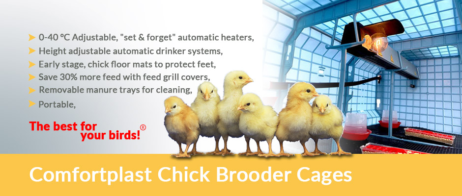 Chick Brooder Cages - Crescentquail