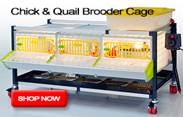 Chick & Quail Brooder Housing
